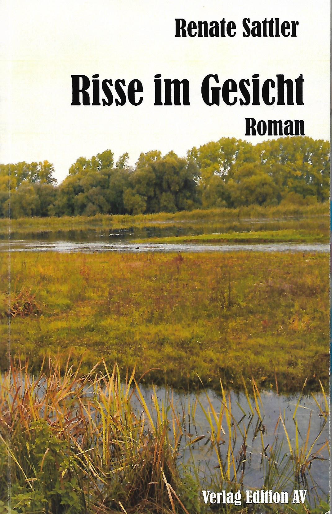 Cover Risse